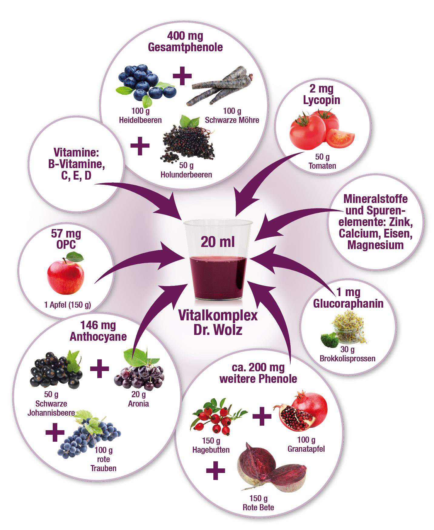 Vor allem die sekundären Pflanzenstoffe in Obst und Gemüse sind wichtig, um die Denk- und Problemlösungsfähigkeit zu verbessern.